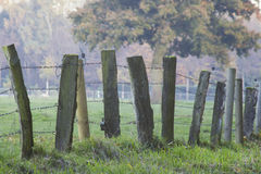 A wooden fence with barbed wire standing in a field Stock Photo