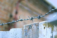 Wooden fence with barbed wire in winter. Stock Photography