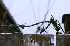 Wooden fence with barbed wire in winter. Royalty Free Stock Photography