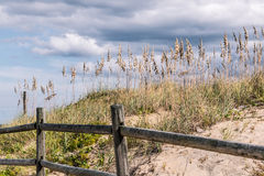 Wooden fence with beach grass and dunes in Summer Stock Photography