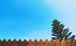Wooden fence and blue sky with a tree Stock Images