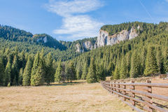 Wooden fence from Bucegi Mountains Stock Image