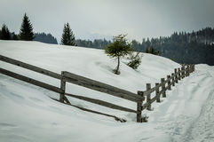 Wooden fence in cold winter Royalty Free Stock Photo