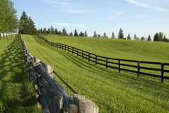 Wooden fence in the country. Old wooden fence in the country at a horse farm Royalty Free Stock Images
