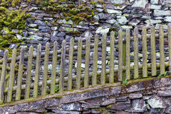 Wooden fence at a drystone wall Stock Images