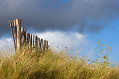 Wooden fence on the dunes Stock Photo