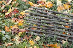 Wooden fence with fall colored leaves in the background Royalty Free Stock Photos