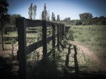 Wooden fence in the field. Broken. somewhere in the village royalty free stock photos