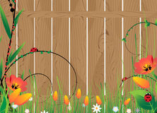 Wooden fence and flowers Stock Photos