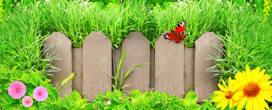 Wooden fence, flowers and green grass Stock Photos
