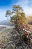Wooden fence in fog on frozen meadow at sunrize Stock Photos
