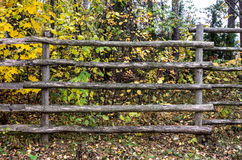 Wooden fence in forest Stock Photography