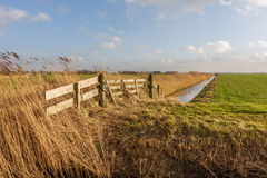 Wooden fence at frisian landscape Stock Image