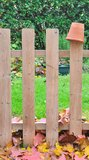Wooden fence in garden Royalty Free Stock Photo