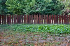Wooden fence in the garden Stock Photo