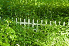 Wooden fence in the grass Royalty Free Stock Photo