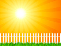 Wooden fence and grass 6 Royalty Free Stock Photo