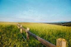 Wooden fence in a grass field against a blue sky. Stock Photo