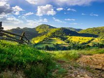Wooden fence in the grass on the hillside. Near the village Royalty Free Stock Photography