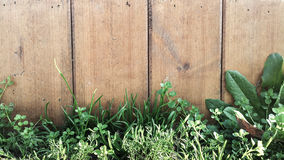 Wooden fence with grass Stock Photography