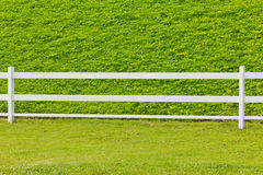 Wooden fence in the grass. Stock Image