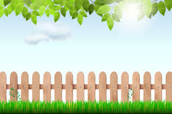 Wooden fence, grass, tree branch and sky Stock Images