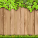 Wooden fence, grass and tree branch Royalty Free Stock Image