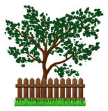 Wooden Fence with grass and tree isolated vector symbol icon des. Ign. Beautiful illustration isolated on white background Royalty Free Stock Images