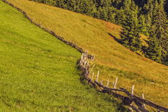 Wooden fence and grasslands Royalty Free Stock Photos