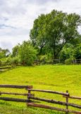 Wooden fence on grassy rural field with tree. Lovely springtime scenery Stock Photography