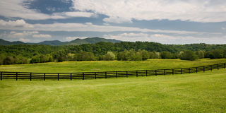 Wooden fence in green field Stock Photo