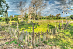 Wooden fence in a green field in hdr Royalty Free Stock Images