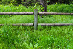 Wooden fence with green grass all around Stock Photos