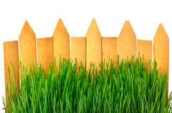 Wooden fence and green grass background Royalty Free Stock Photography