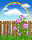Wooden fence on green grass with flowers. Against the sky Stock Photos