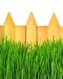 Wooden fence and green grass. Isolated on white Stock Photo