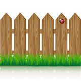 Wooden fence. With a green grass and ladybird Royalty Free Stock Photography