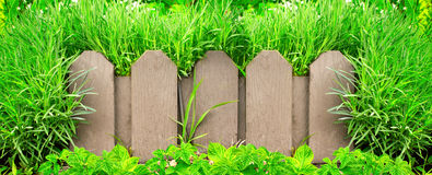 Wooden fence and green grass Royalty Free Stock Image