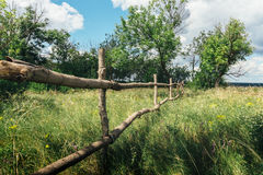 Wooden fence among green grass and trees Stock Images