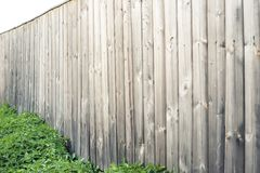 wooden fence with green lawn and trees stock photography