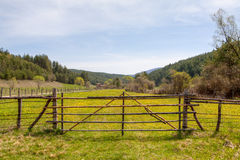 Wooden fence on green meadow Stock Photos