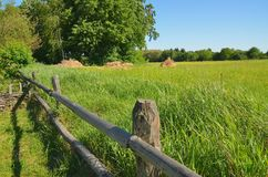 Wooden fence among high green grass. Background Stock Photos