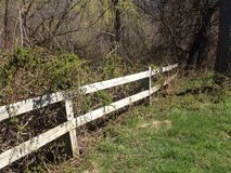 Wooden fence leads into the woods Royalty Free Stock Images