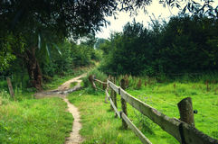 Wooden fence on meadow.  Royalty Free Stock Photo