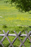 Wooden fence. With meadow behind it Royalty Free Stock Photos