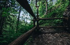 Forrest around the wooden fence. Wooden fence in the middle of the forrest Stock Image