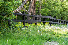 Wooden fence and nature Royalty Free Stock Photography