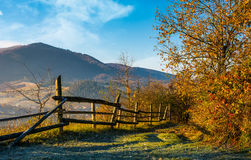 Wooden fence near forest in mountains Royalty Free Stock Photos