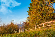 Wooden fence near forest in mountains Royalty Free Stock Image
