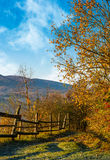 Wooden fence near forest in mountains Stock Image